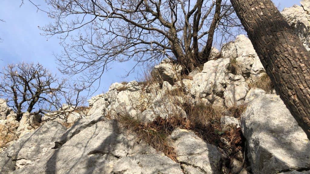 sentiero sulle rocce