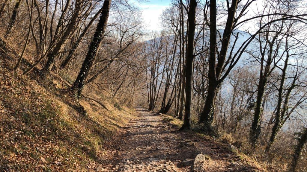 sentiero verso galbiate