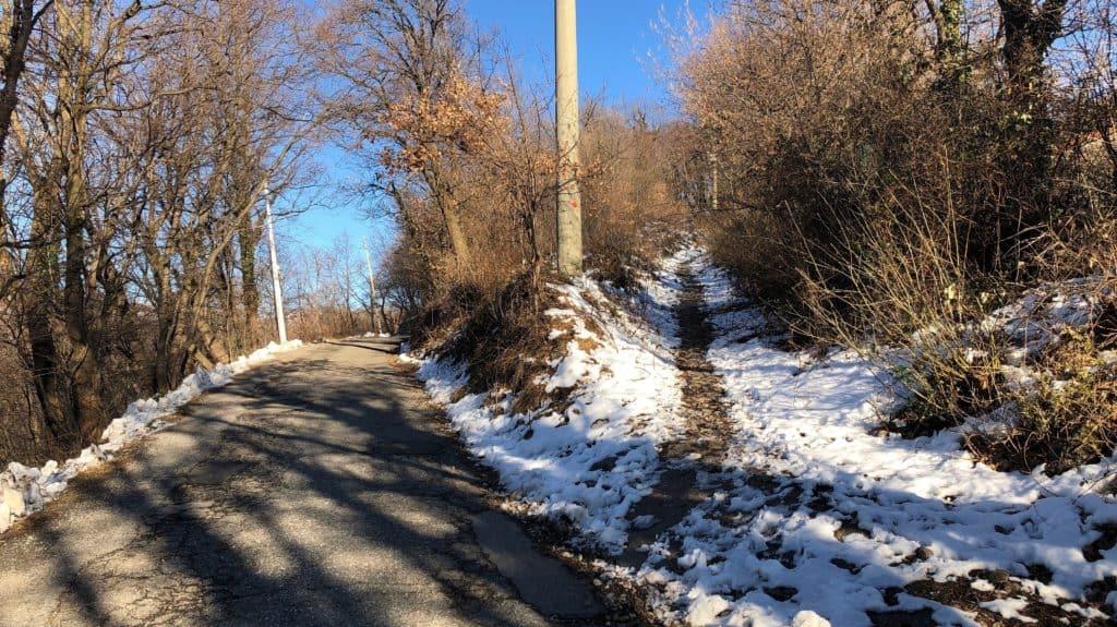 sentiero verso trattoria alpe carella