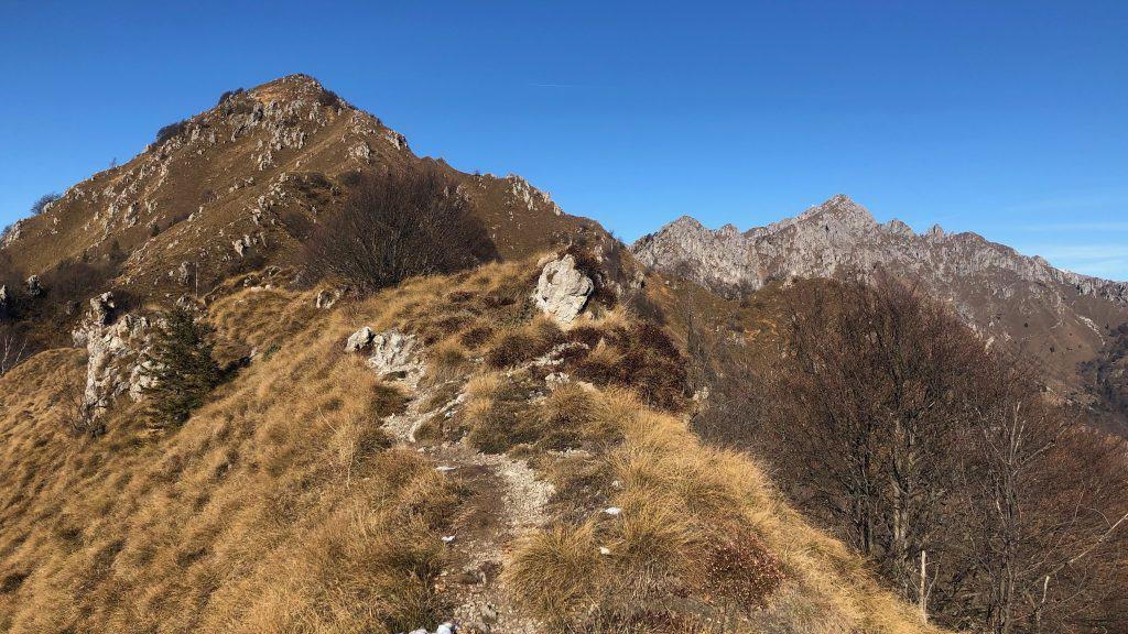 sentiero verso la vetta del Suchello