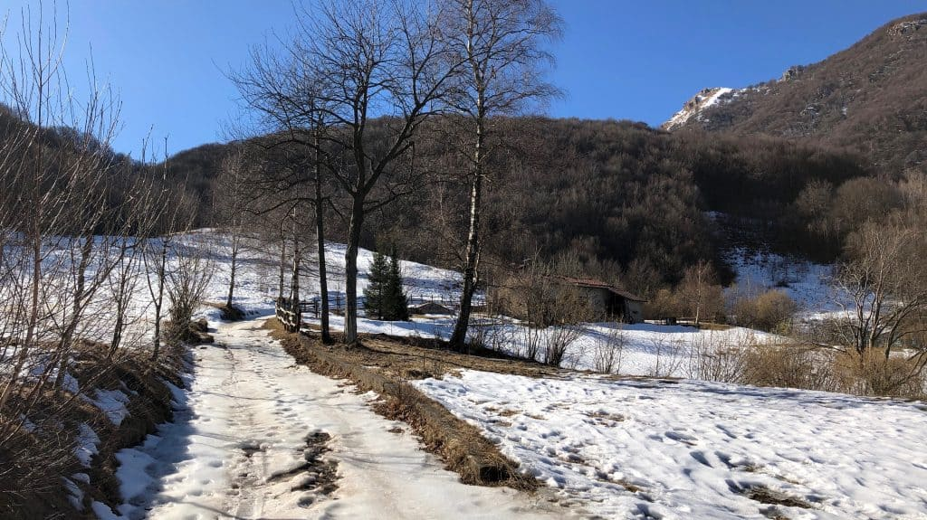 strada forestale verso il monte due mani