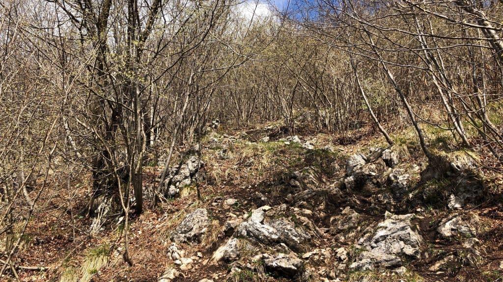 sentiero per monte ocone