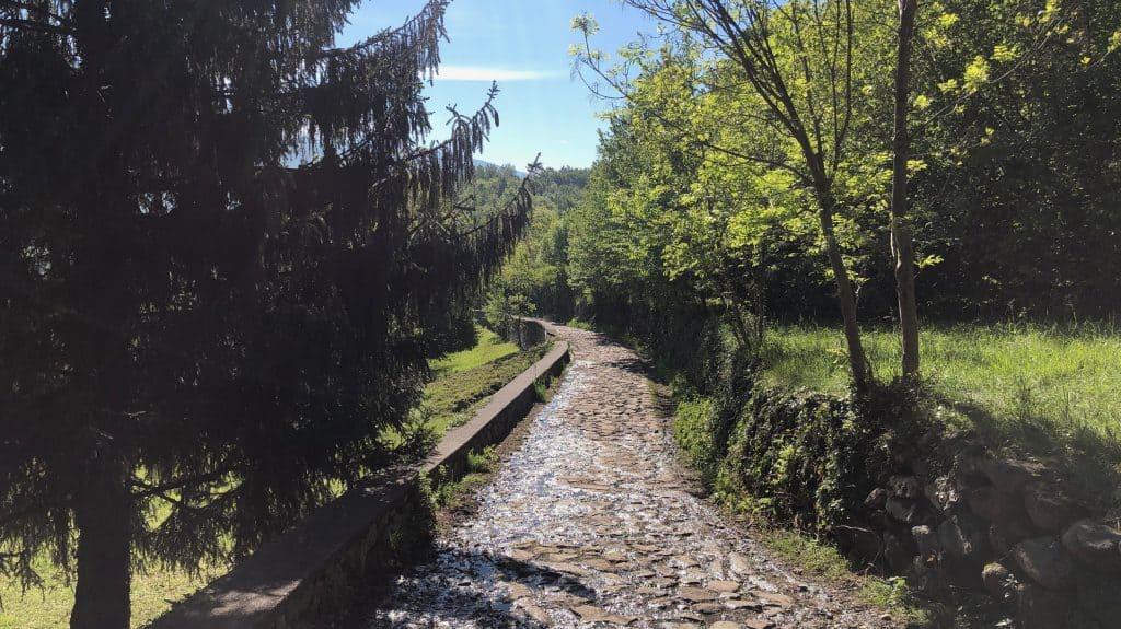 sentiero verso san pietro al monte