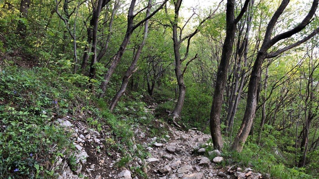 sentiero per san pietro al monte