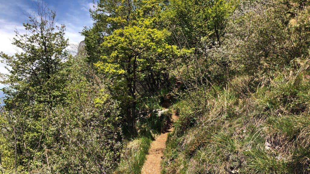 sentiero sul monte san martino
