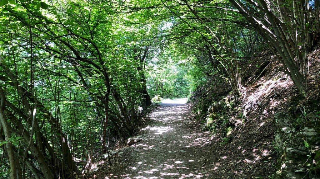 sentiero verso il palanzone