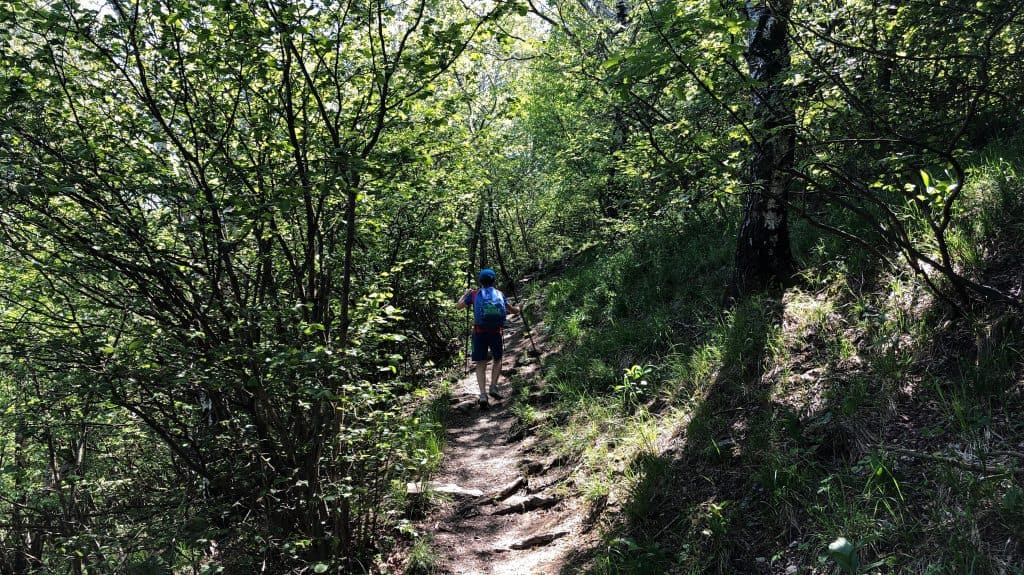 sentiero verso monte puscio