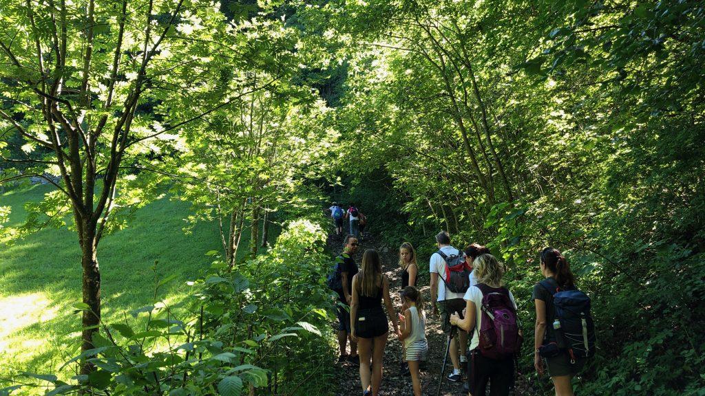 monte poieto sentiero nel bosco